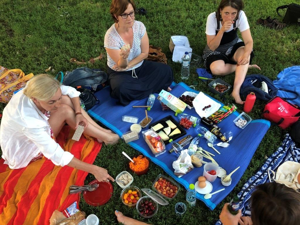 25 juin 2019, Parc de la Citadelle à Strasbourg : Pique-nique Parlote des Facilitateurs d'Alsace